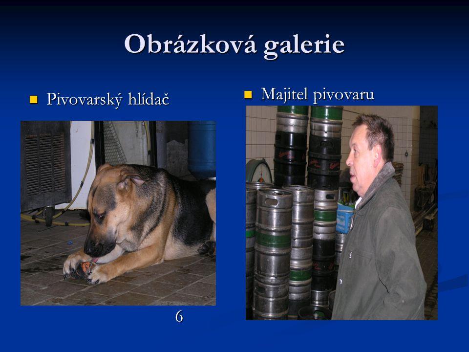 Obrázková galerie Majitel pivovaru Pivovarský hlídač 6