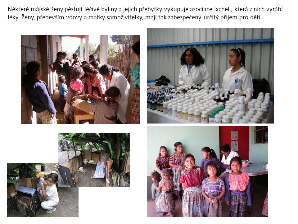 Některé májské ženy pěstují léčivé byliny a jejich přebytky vykupuje asociace Ixchel , která z nich vyrábí léky.