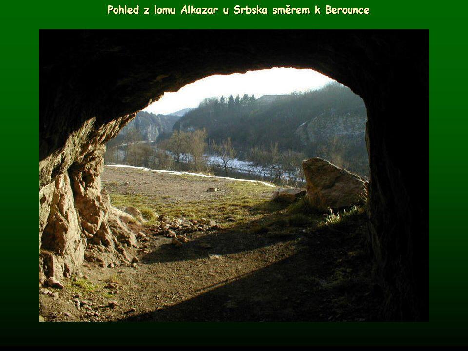 Pohled z lomu Alkazar u Srbska směrem k Berounce