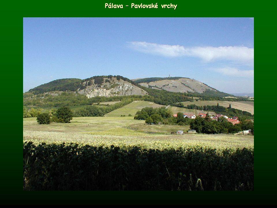 Pálava – Pavlovské vrchy