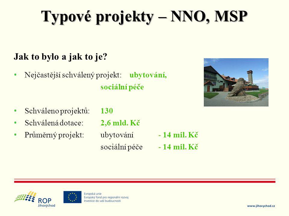 Typové projekty – NNO, MSP