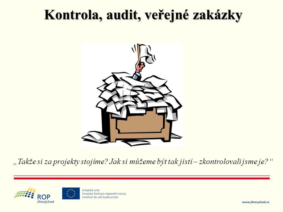 Kontrola, audit, veřejné zakázky