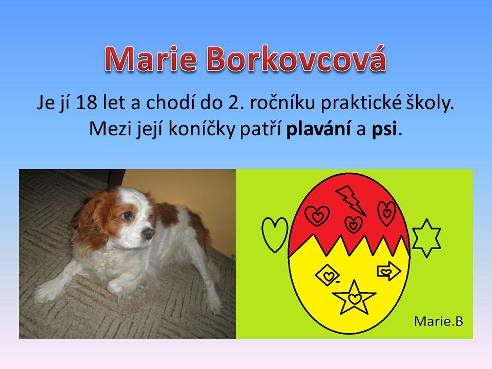 Marie Borkovcová Je jí 18 let a chodí do 2. ročníku praktické školy.