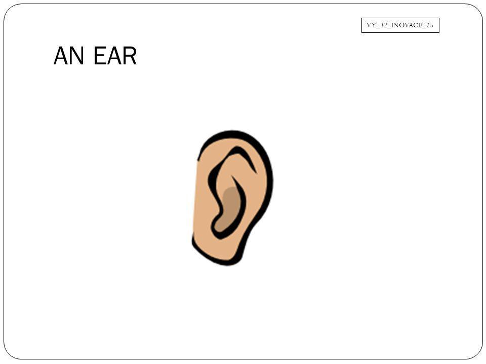 AN EAR VY_32_INOVACE_25