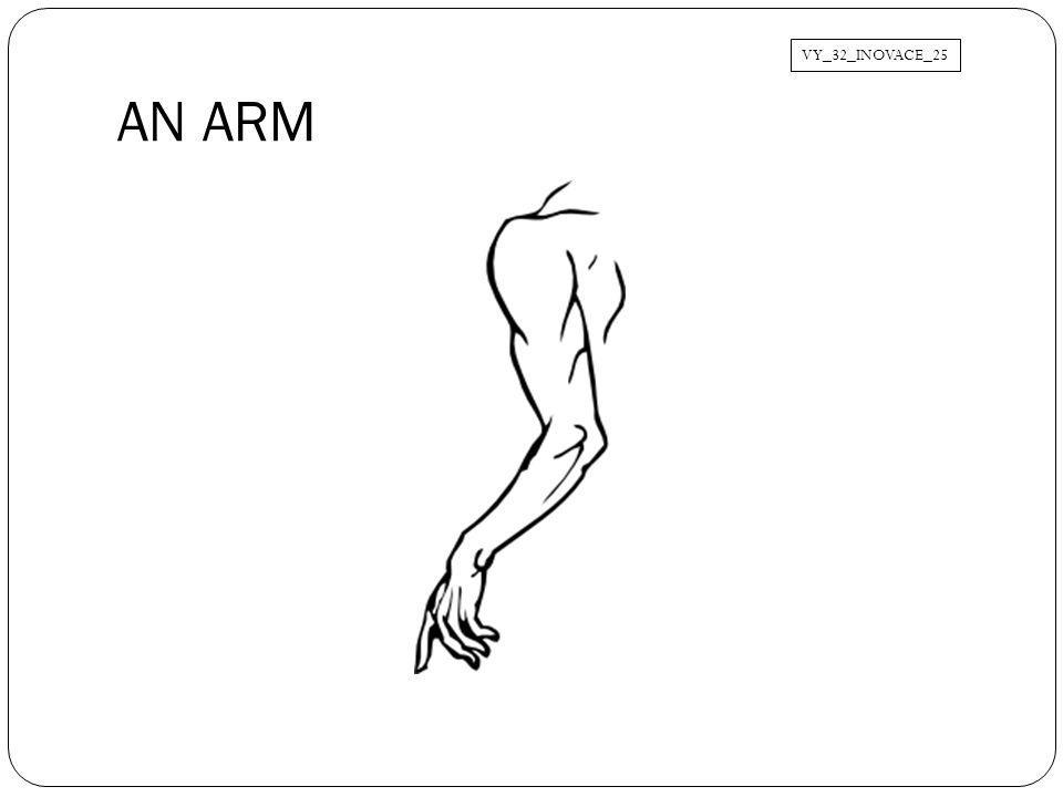 AN ARM VY_32_INOVACE_25