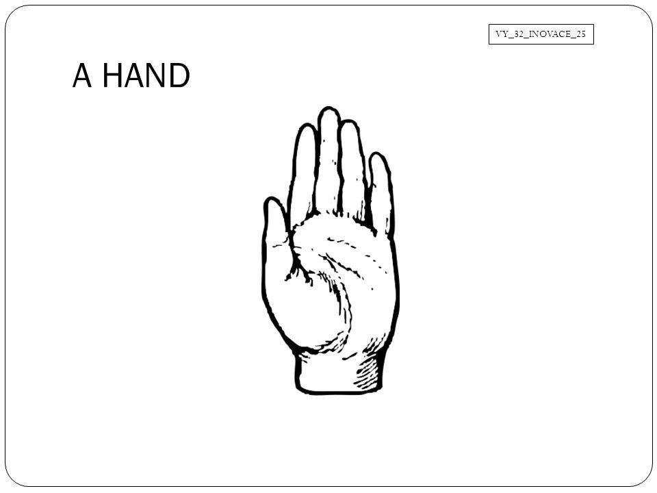 A HAND VY_32_INOVACE_25