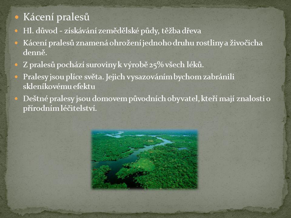 Kácení pralesů Hl. důvod - získávání zemědělské půdy, těžba dřeva