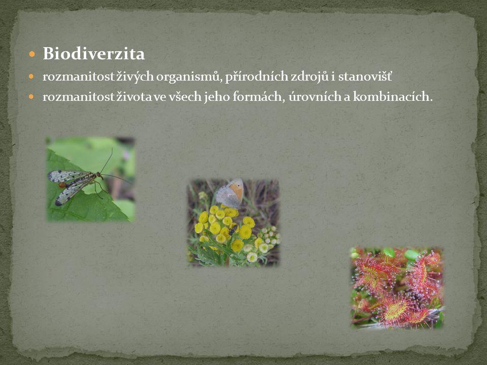 Biodiverzita rozmanitost živých organismů, přírodních zdrojů i stanovišť.