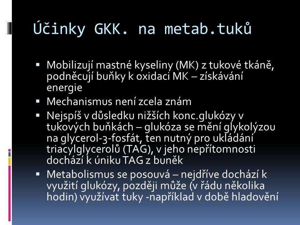 Účinky GKK. na metab.tuků