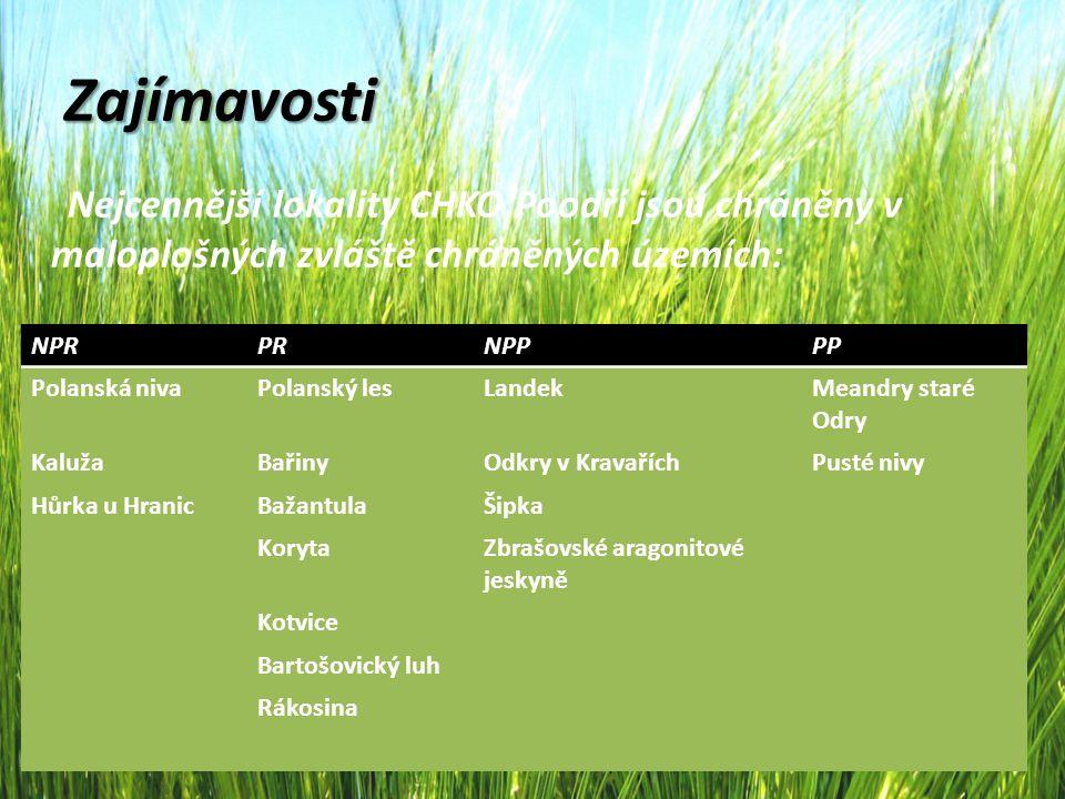 Zajímavosti Nejcennější lokality CHKO Poodří jsou chráněny v maloplošných zvláště chráněných územích: