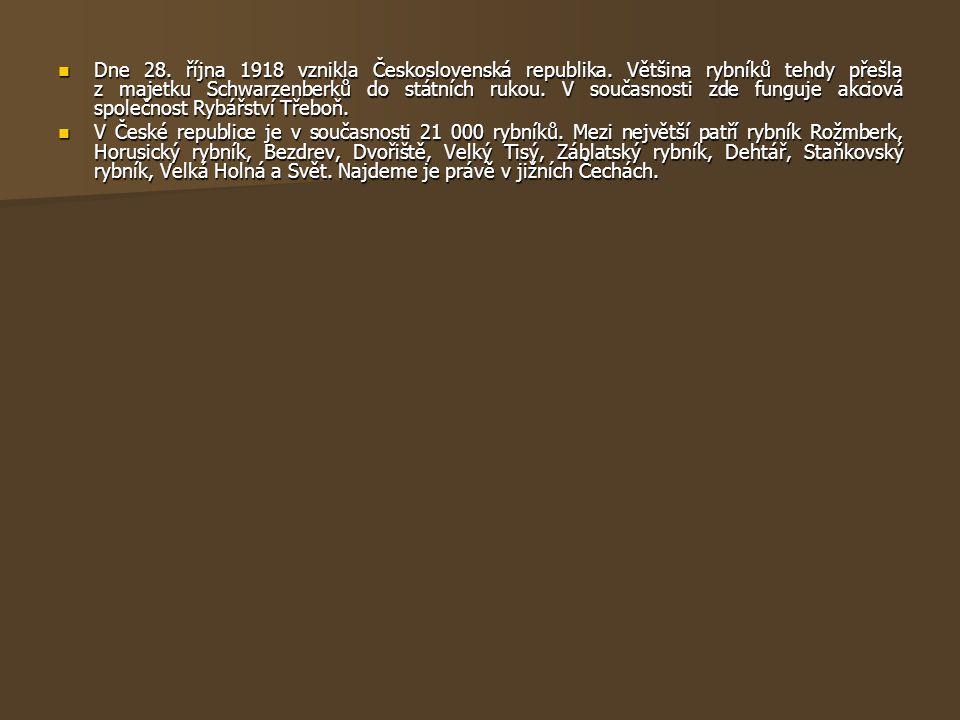 Dne 28. října 1918 vznikla Československá republika