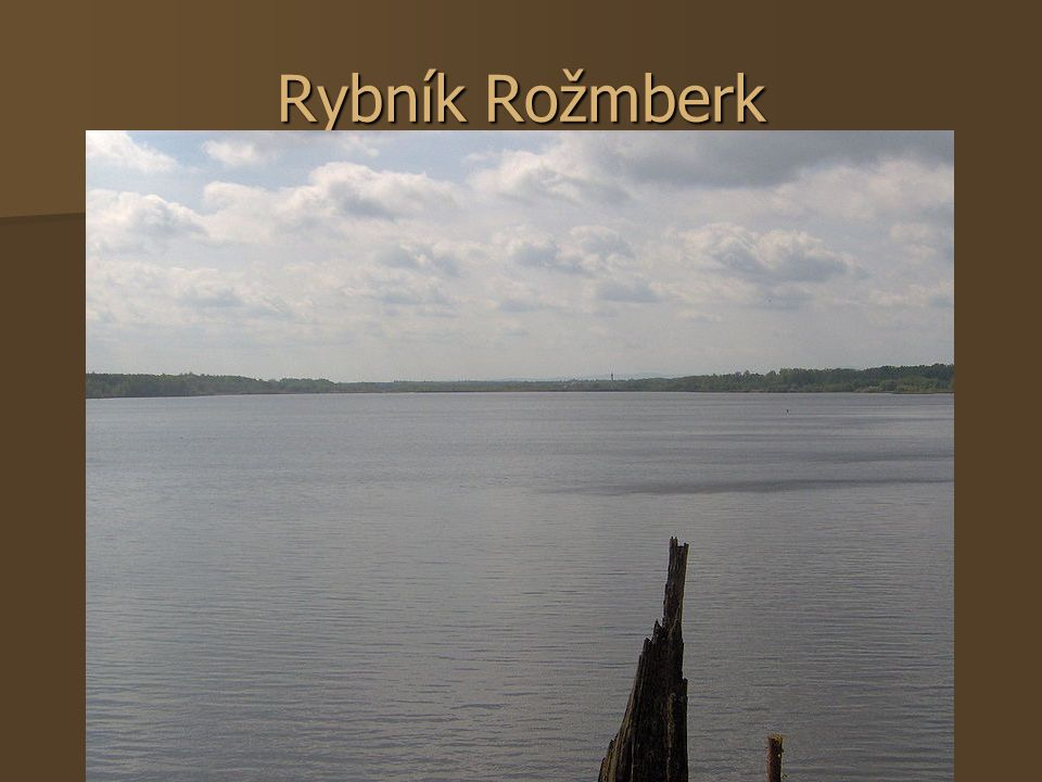 Rybník Rožmberk