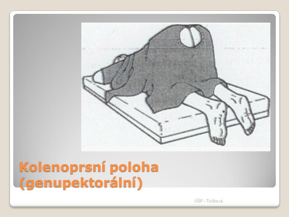 Kolenoprsní poloha (genupektorální)