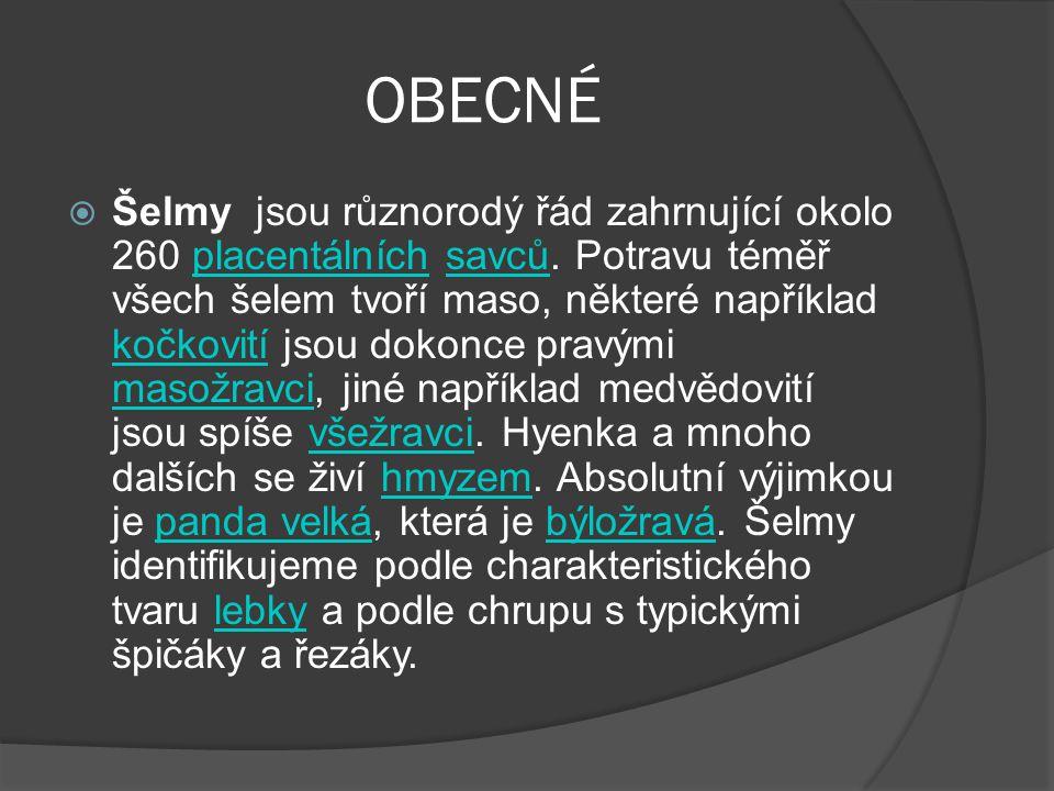 OBECNÉ