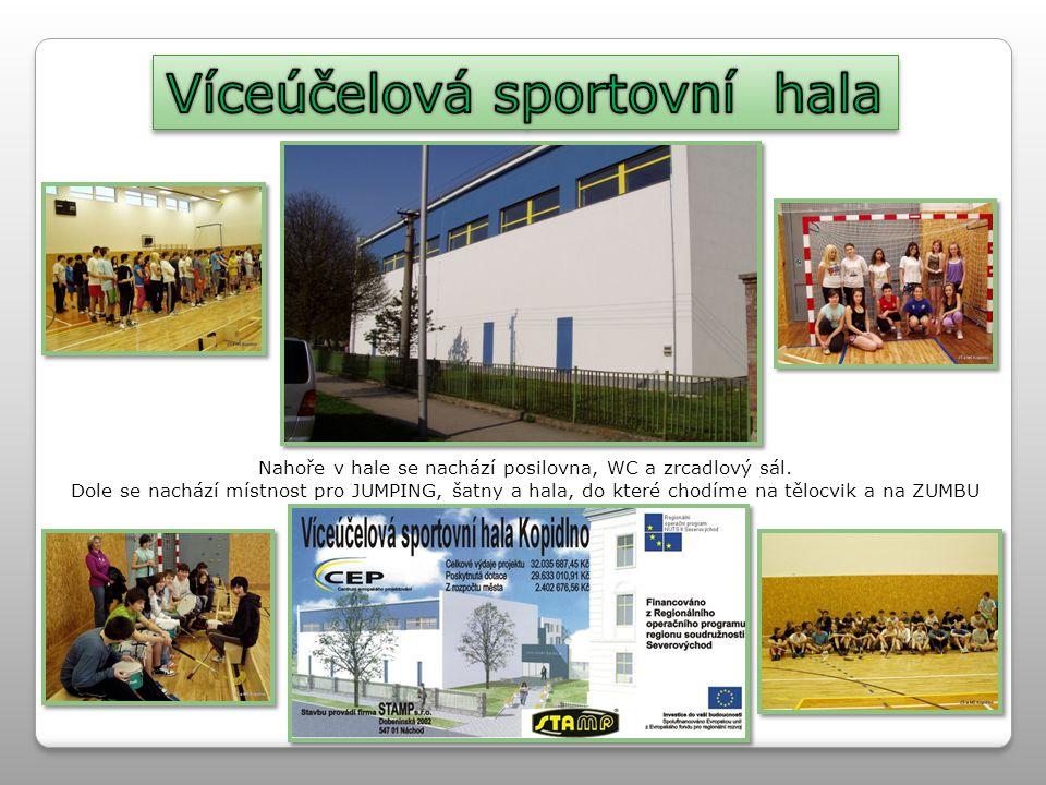 Víceúčelová sportovní hala
