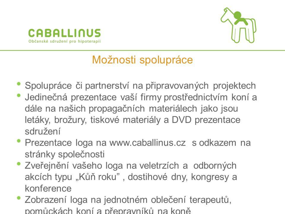 Možnosti spolupráce Spolupráce či partnerství na připravovaných projektech.