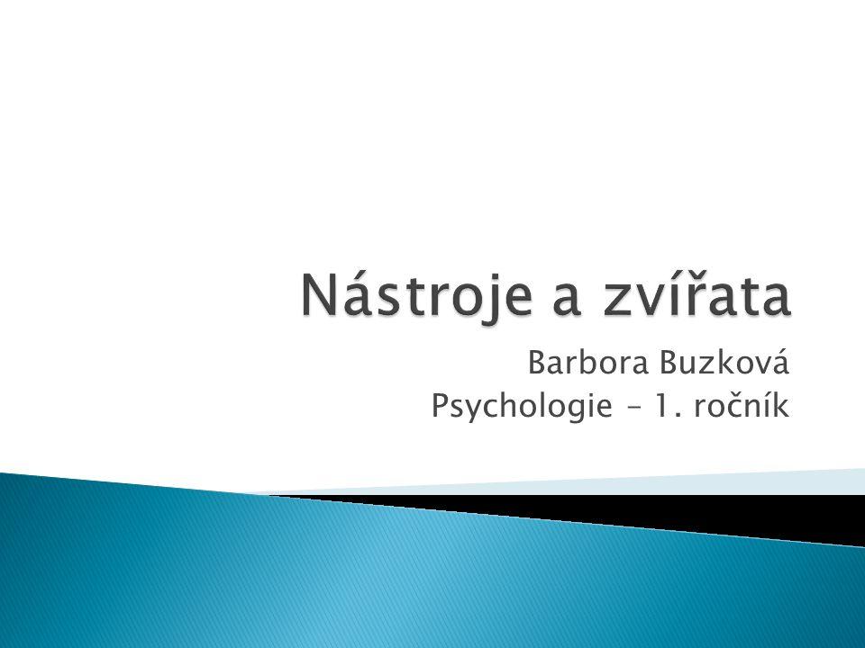 Barbora Buzková Psychologie – 1. ročník