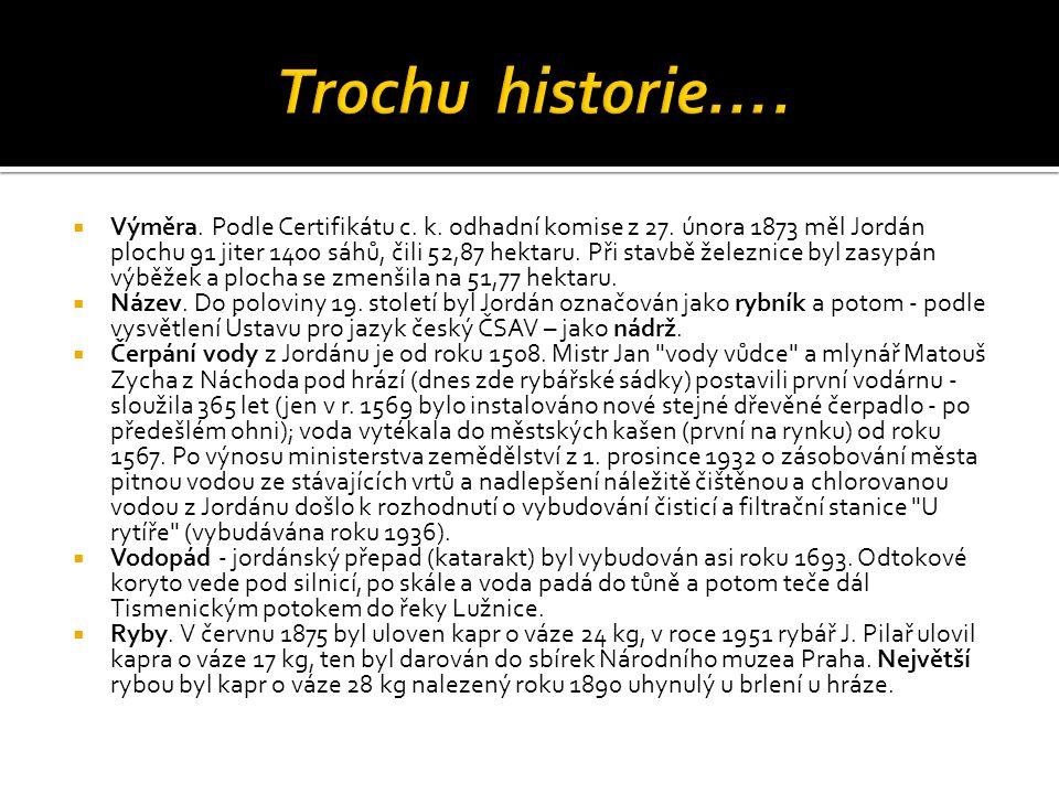 Trochu historie….