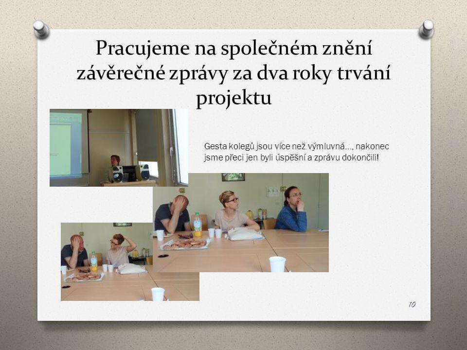 Pracujeme na společném znění závěrečné zprávy za dva roky trvání projektu
