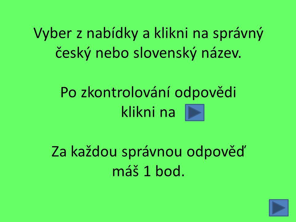 Vyber z nabídky a klikni na správný český nebo slovenský název