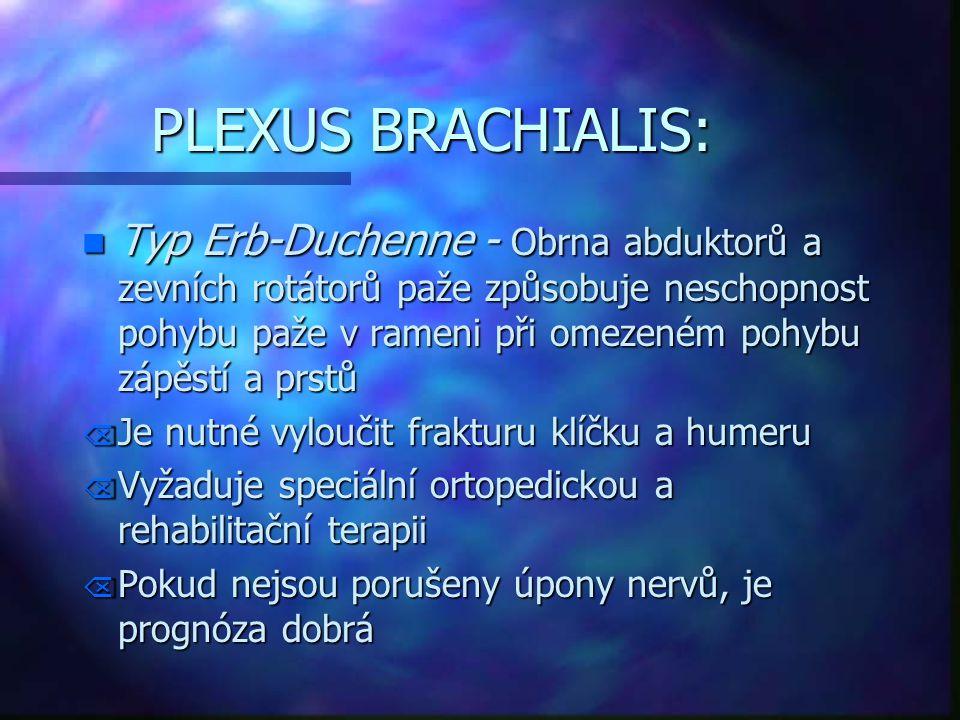PLEXUS BRACHIALIS: