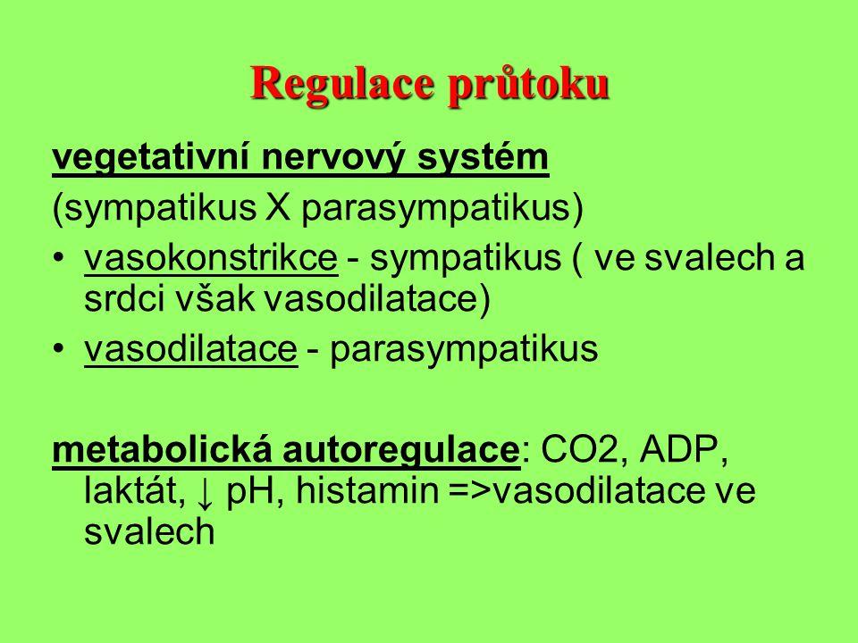 Regulace průtoku vegetativní nervový systém