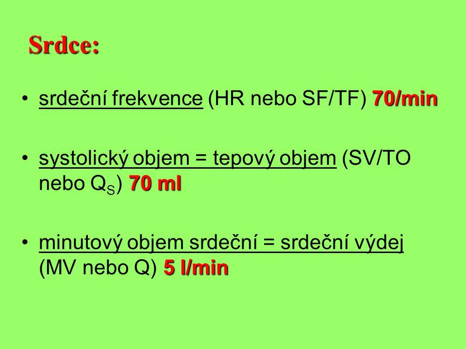 Srdce: srdeční frekvence (HR nebo SF/TF) 70/min