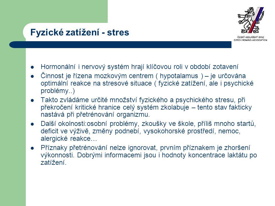 Fyzické zatížení - stres
