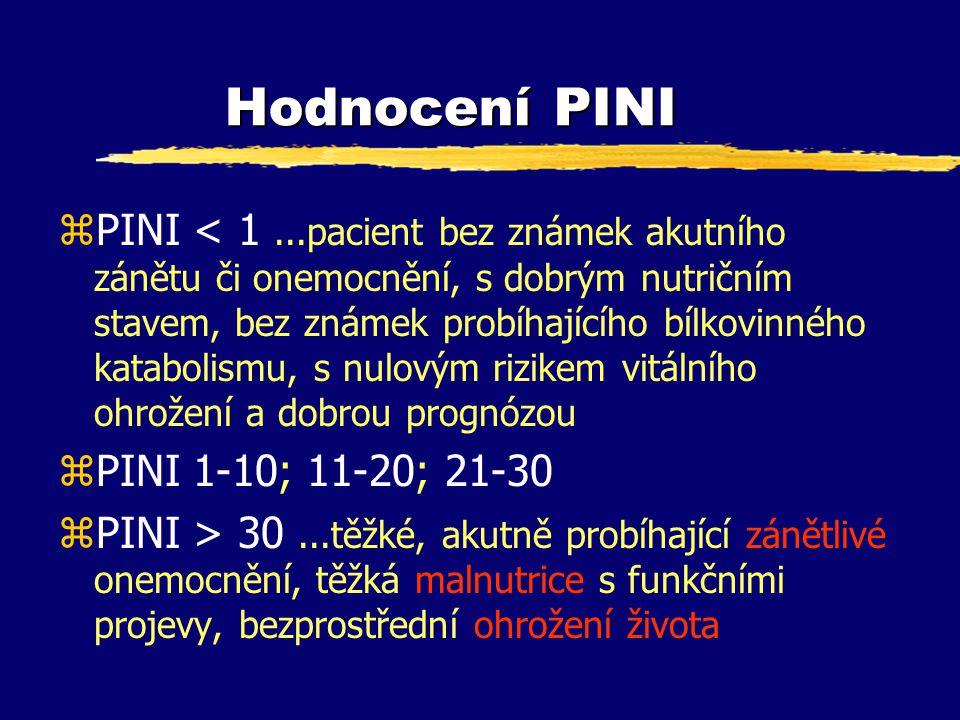 Hodnocení PINI