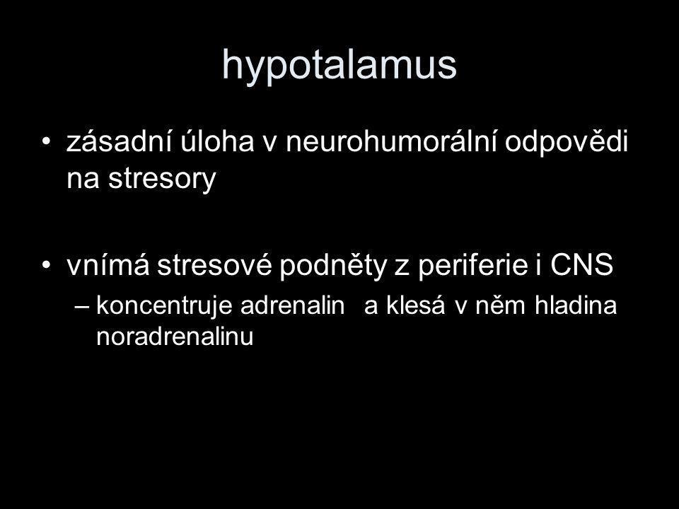 hypotalamus zásadní úloha v neurohumorální odpovědi na stresory