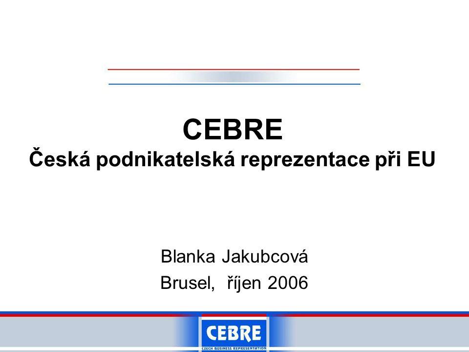 CEBRE Česká podnikatelská reprezentace při EU