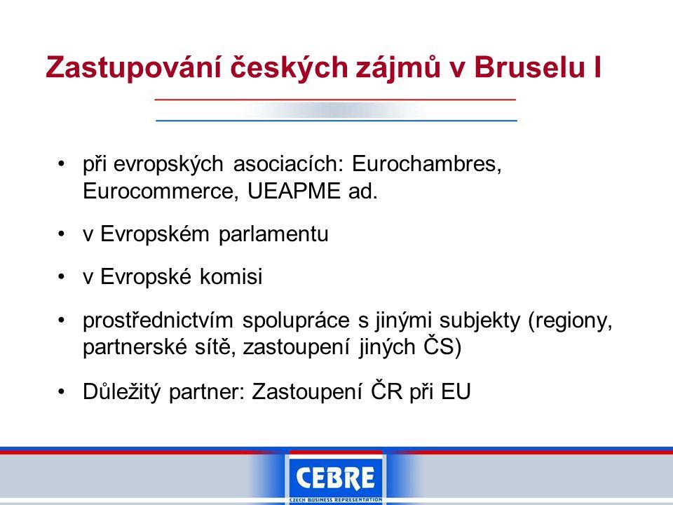 Zastupování českých zájmů v Bruselu I