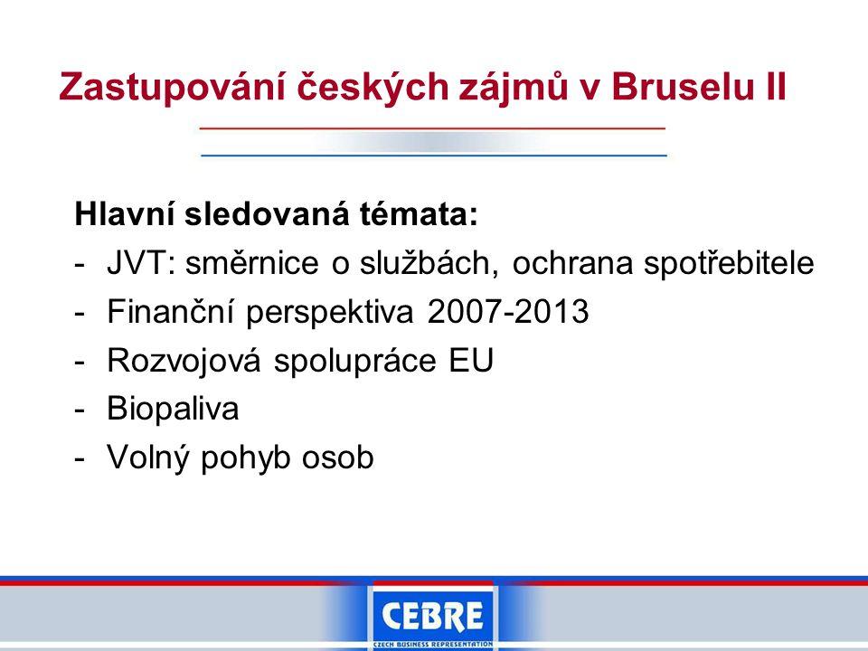Zastupování českých zájmů v Bruselu II