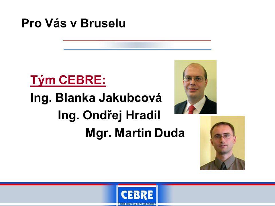 Tým CEBRE: Ing. Blanka Jakubcová Ing. Ondřej Hradil Mgr. Martin Duda