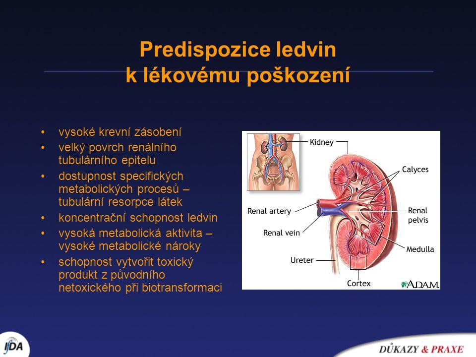 Predispozice ledvin k lékovému poškození