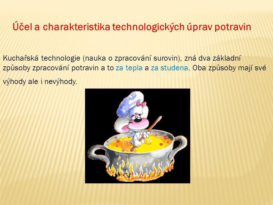 Účel a charakteristika technologických úprav potravin