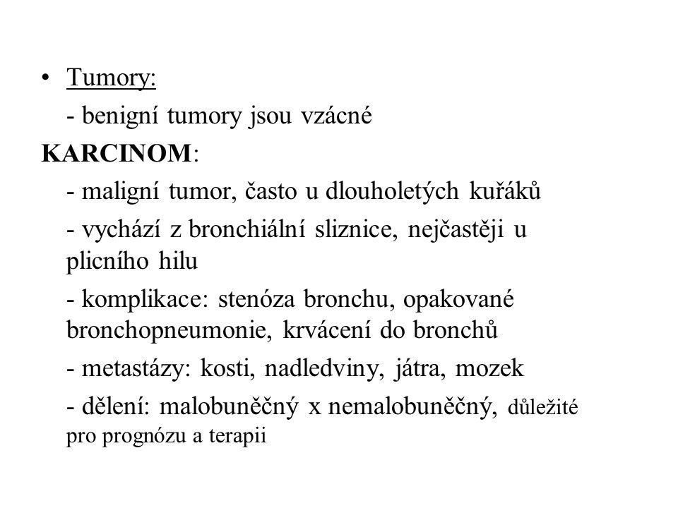 Tumory: - benigní tumory jsou vzácné. KARCINOM: - maligní tumor, často u dlouholetých kuřáků.