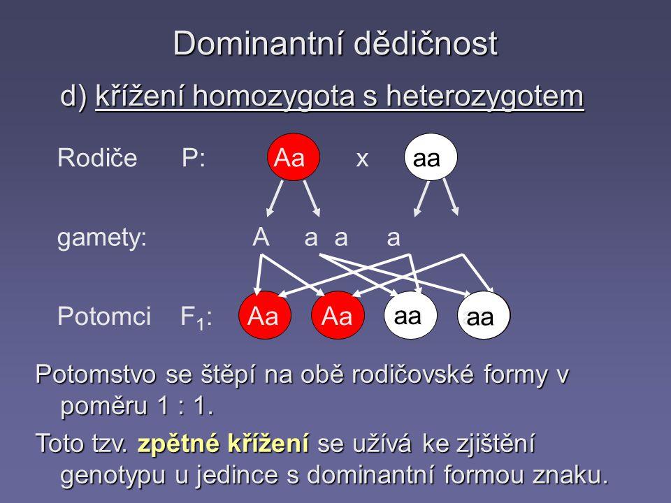 Dominantní dědičnost d) křížení homozygota s heterozygotem Rodiče P: