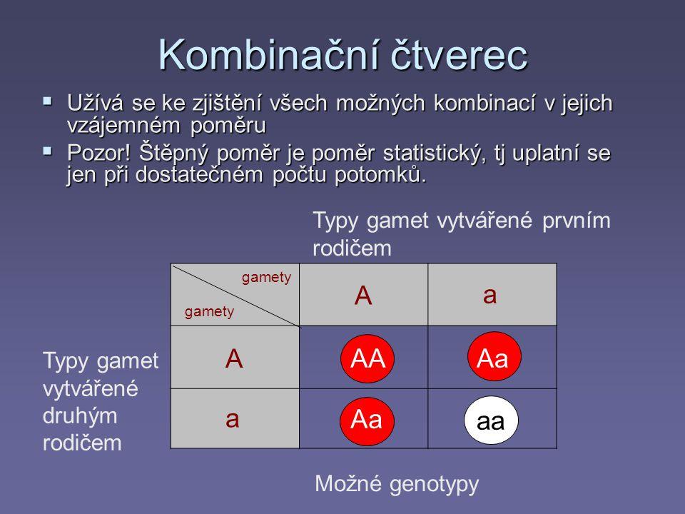 Kombinační čtverec A a A AA Aa a Aa aa aa