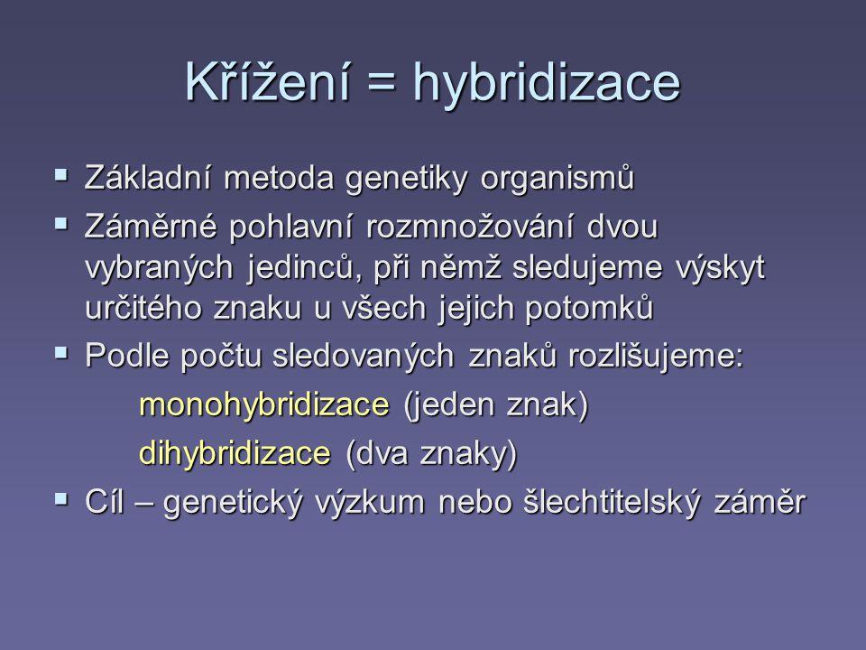 Křížení = hybridizace Základní metoda genetiky organismů