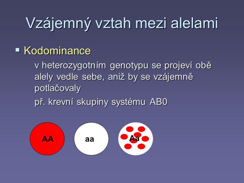 Vzájemný vztah mezi alelami
