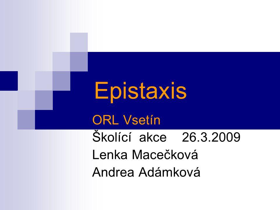 ORL Vsetín Školící akce 26.3.2009 Lenka Macečková Andrea Adámková