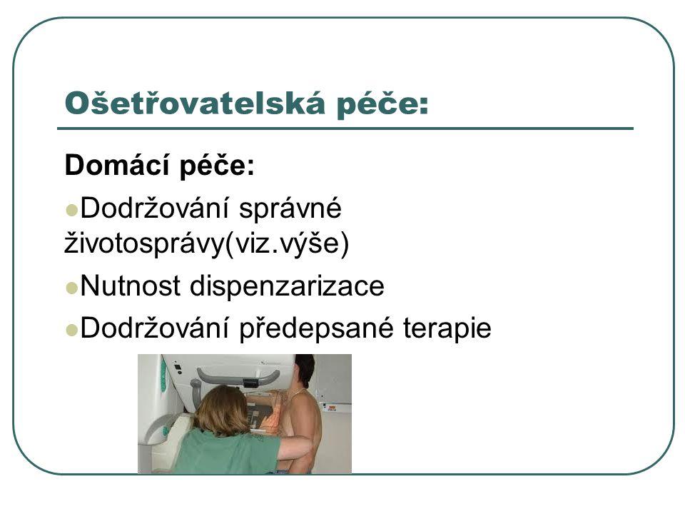 Ošetřovatelská péče: Domácí péče: