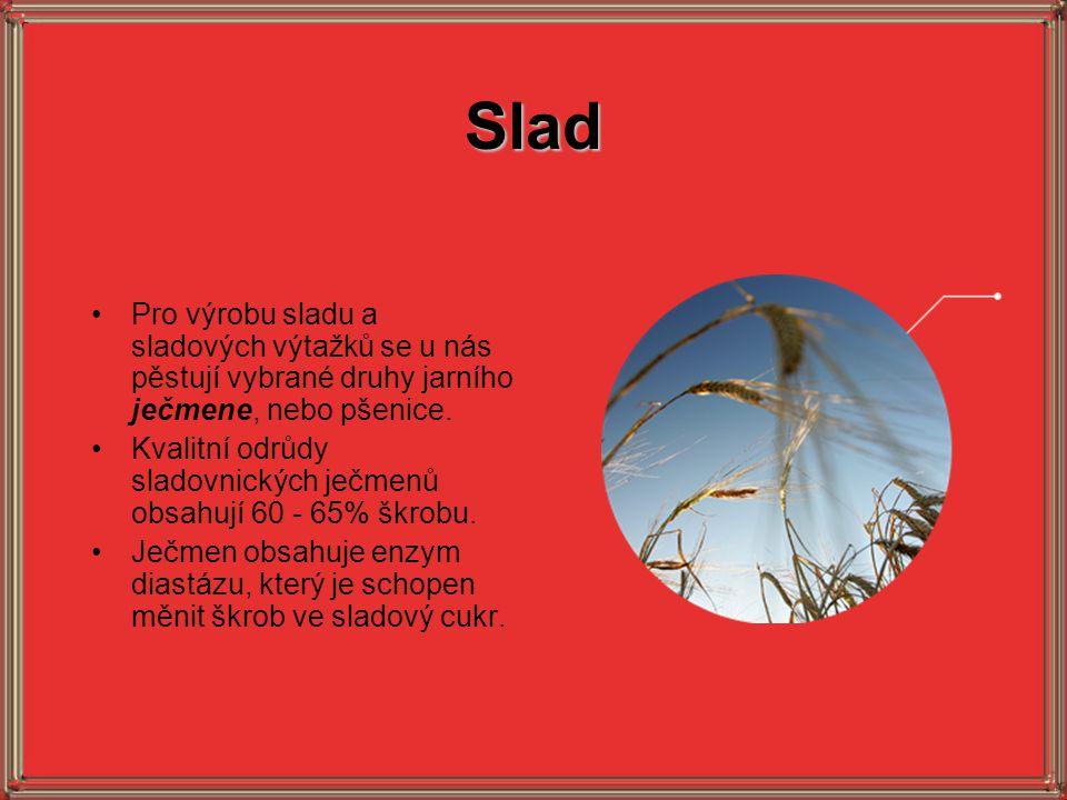 Slad Pro výrobu sladu a sladových výtažků se u nás pěstují vybrané druhy jarního ječmene, nebo pšenice.