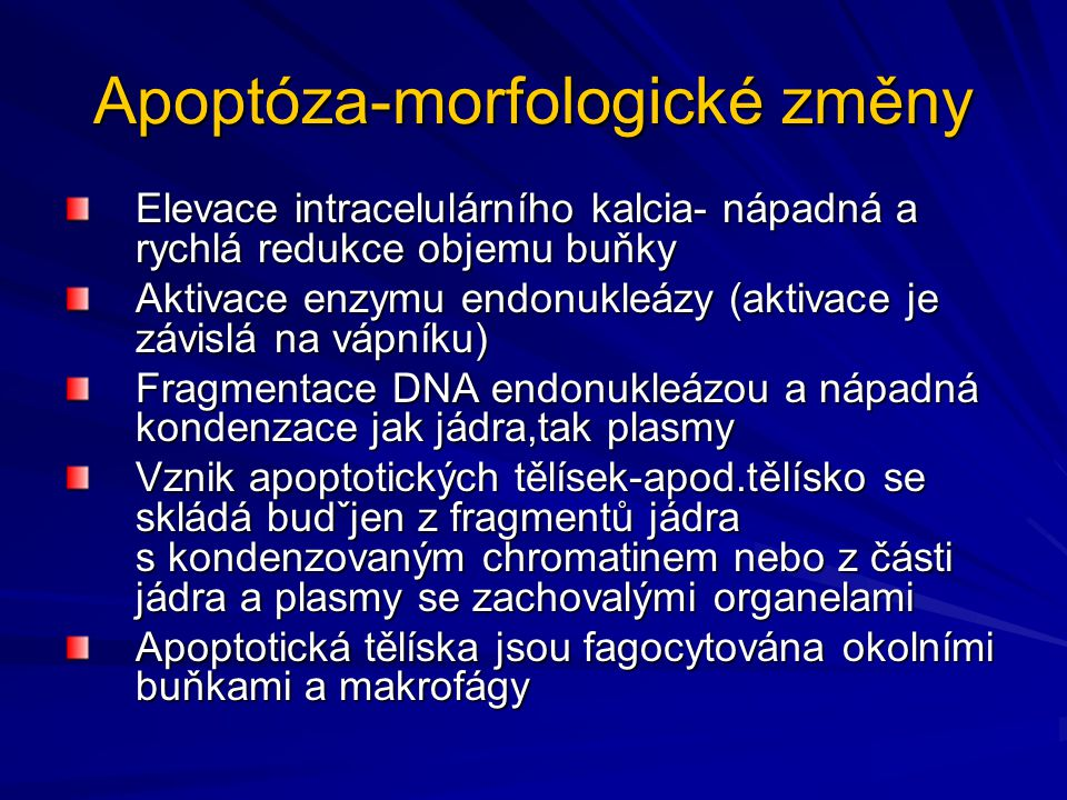 Apoptóza-morfologické změny