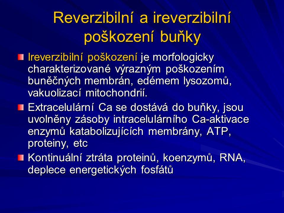 Reverzibilní a ireverzibilní poškození buňky