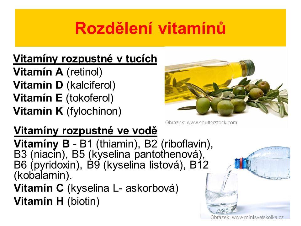Rozdělení vitamínů Vitamíny rozpustné v tucích Vitamín A (retinol)