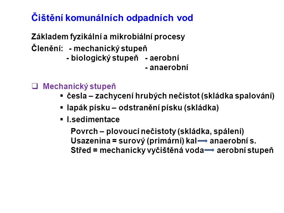 Členění: - mechanický stupeň - biologický stupeň - aerobní - anaerobní