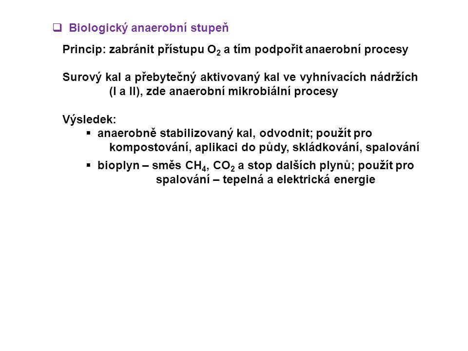 Biologický anaerobní stupeň