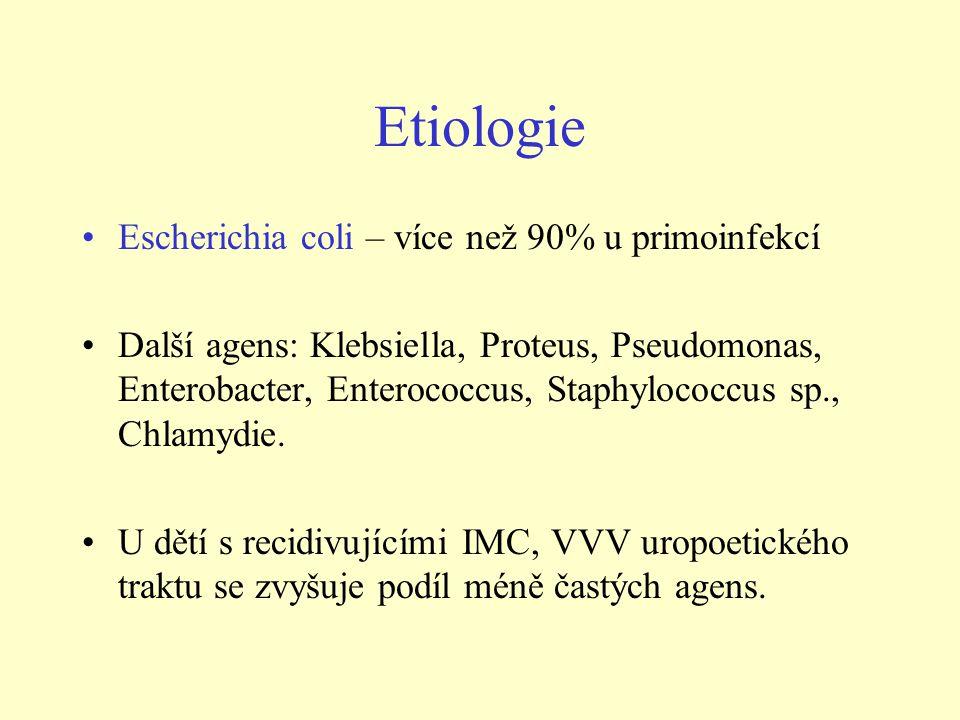 Etiologie Escherichia coli – více než 90% u primoinfekcí